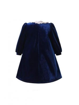 Navy Blue Velvet Vintage A-line Long Sleeves Dress